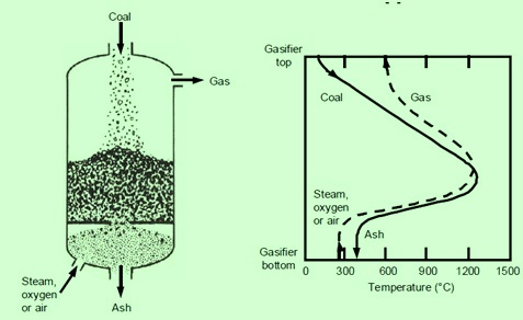 Reaction zones in a gasifier