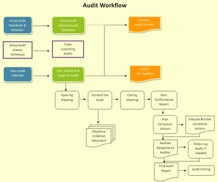 Audit work flow