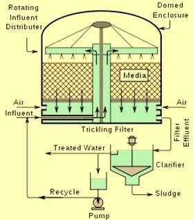 trickling filter