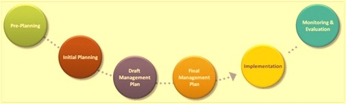 Steps in management planning