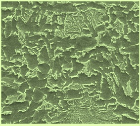 Microstructure of FB steels