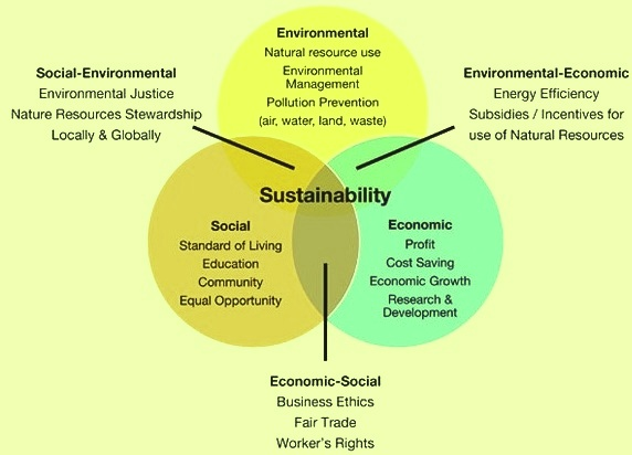 Drivers of sustainability
