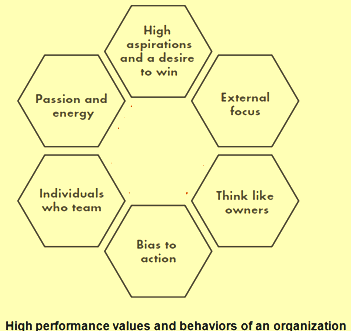High performance values and behaviours