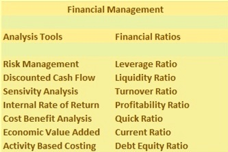 Analysis tools and financial ratios