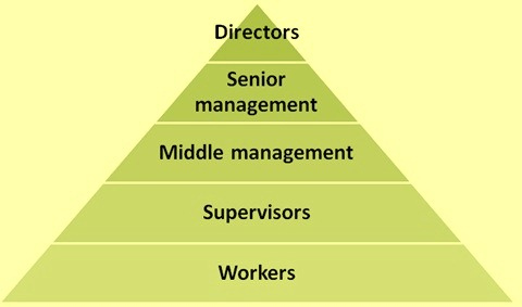 place-of-workers-in-organizational-structure